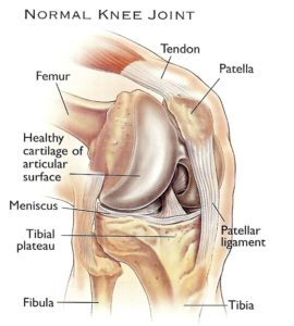 dr-peter-smith-knee-replacement-3