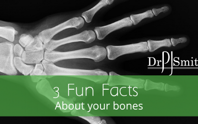 3 Fun Facts About Your Bones